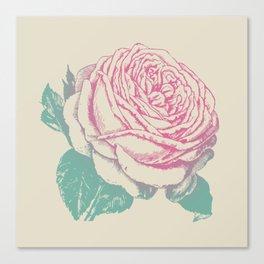 rosa rosae rosarum Canvas Print