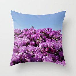 "View of ""Mount Rhodendron"" on a clear day Throw Pillow"