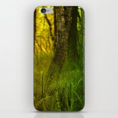 Two sides of the swamps iPhone & iPod Skin