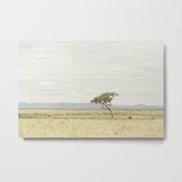 tree of life::kenya Metal Print