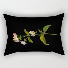 Saponaria Officinalis Mary Delany British Botanical Floral Art Paper Flowers Black Background Rectangular Pillow