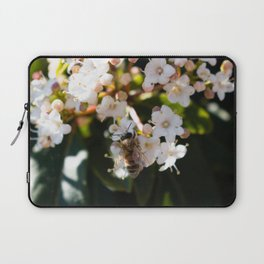 Bee in Late Winter (1 of 2) Laptop Sleeve