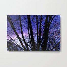 Sunset through the trees Metal Print