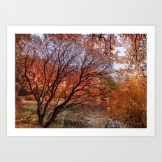 Mad colors of Autumn Art Print