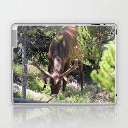 Elk Buck With Velvet Horns in Trees Yellowstone National Park Laptop & iPad Skin