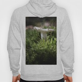 Tiny Forest Hoody