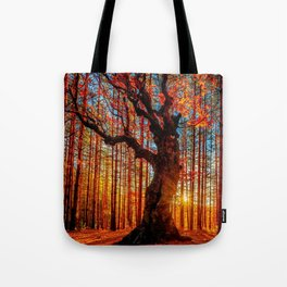 Majestic woods Tote Bag