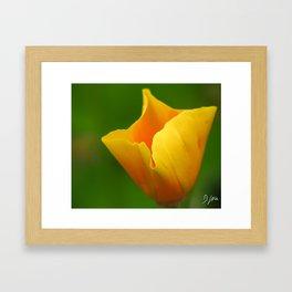 Glowing Yellow Framed Art Print