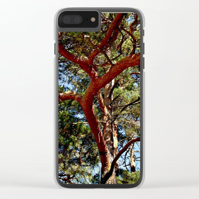 Autumnal lure of the forest Clear iPhone Case