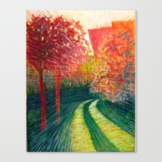 The Path Takes You Canvas Print