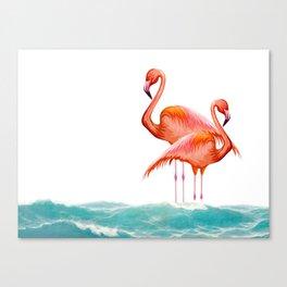 Fenicoteri Canvas Print