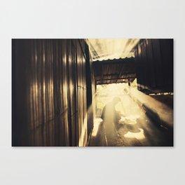 Asia 48 Canvas Print