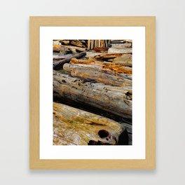 Driven Driftwood Framed Art Print