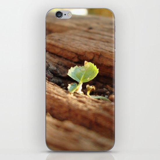 Persistence iPhone & iPod Skin