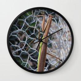 Praying Mantis 2 Wall Clock