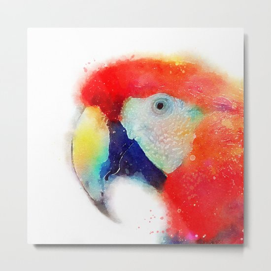 The Articulate - Parrot Metal Print