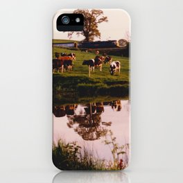 Cows in the Canal iPhone Case