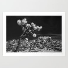 Joshua Trees and Boulders in Infrared Black and White at Joshua Tree National Park California Art Print