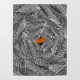 Orange Leaf On Grey And Silver Leaves - Beautiful Background - Autumn mood - #Society6 #buyart Poster