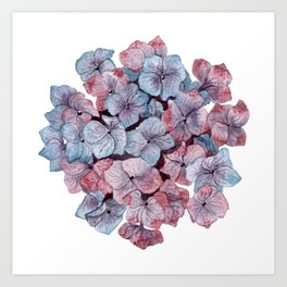 Purple Hydrangea Watercolor Art Print