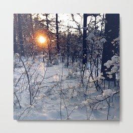 sunset of this winter Metal Print