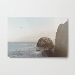 A Break From the Pack in Big Sur Metal Print