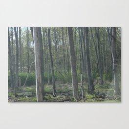 Swamps Canvas Print