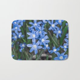 Easter Snow Glories Bath Mat