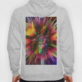 colorful 3d flower v Hoody