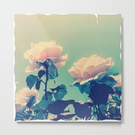 Soft Baby Pink Roses with Mint Blue Sky Backgroud Metal Print