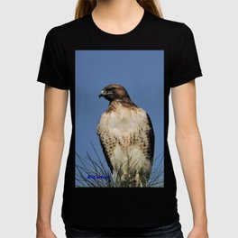 Red-Tailed Hawk on Watch at Foothill and B Street T-shirt