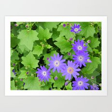 Purple flowers on leafy greens Art Print