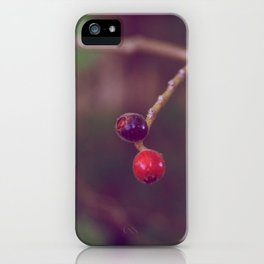 Vintage Nature iPhone Case