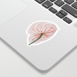 Pink Anthurium Sticker