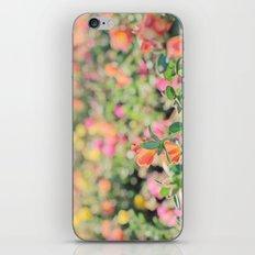 Bokeh iPhone & iPod Skin