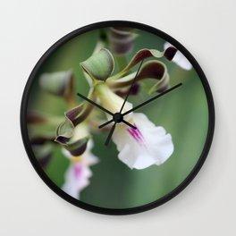 Monkey Orchide Wall Clock