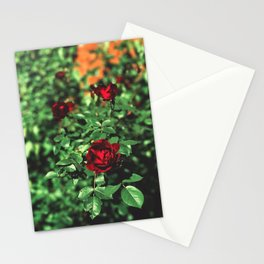 Ancient Origins Stationery Cards