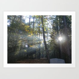 Sun Peaking through Woods. Art Print