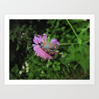moth Art Prints featuring moth by giol's
