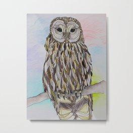 As Sure As the Sun (Barred Owl) Metal Print