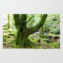 Torc Tree Rug