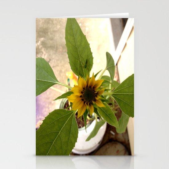 Flower Spider Stationery Cards