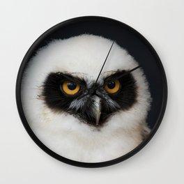 Owl_20180210_by_JAMFoto Wall Clock