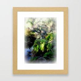 Billabong Framed Art Print