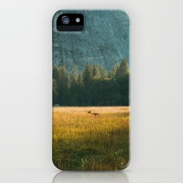 Meadow Sunset in Yosemite iPhone Case