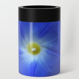 Blue, Heavenly Blue morning glory Can Cooler