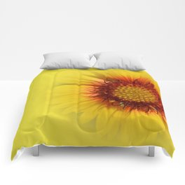 Flowers: Kissed by the sun sunflower Comforters