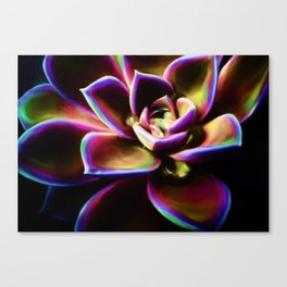 RAINBOW SUCCULENT Canvas Print