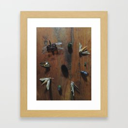 Bugs part 4 Framed Art Print