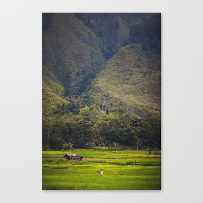 Asia 43 Canvas Print